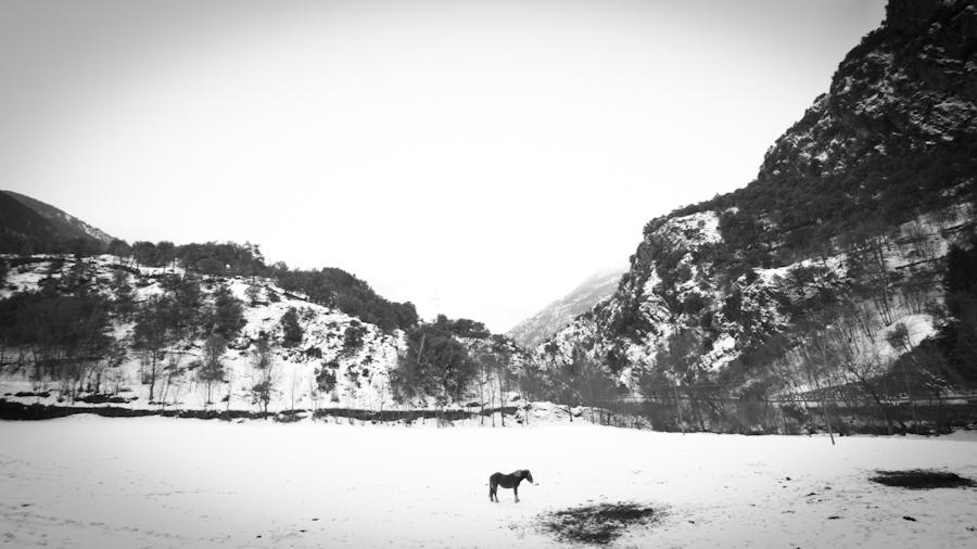 13.01.25_Curs Pirineu_080